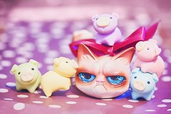 53/365 : Cheer Up Grumpy Cat (♥GreenTea♥) Tags: pig eraser pigeraser pigs erasers pigerasers bluepig pinkpig purplepig greenpig yellowpig blue pink purple green yellow macro tardarsauce grumpycat cat cute iwako iwakoeraser iwakoerasers イワコー t1i canon canont1i canont1irebel canonrebel eos canoneosrebelt1i ef100mmf28macrousm canonef100mmf28macro hdr googlenikcollection nikcollection colorefexpro viveza hdrefexpro 365 photoaday pictureaday project365 365toyproject oneobject oneobject365daysproject 365the2018edition 3652018 day53365 365day53 day53 project36553 22feb18 project36502222018 02222018