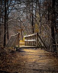Winter Break (Explored) (lclower19) Tags: hornpond woburn massachusetts bridge path explored