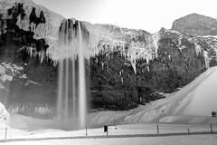 Seljalandsfoss Long Exposure - with NO PEOPLE! (timnutt) Tags: blur winter seljalandsfoss mono snow longexposure waterfall bw monochrome iceland fuji movement blackandwhite water x100t