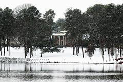 Winter Days (dorameulman) Tags: winter landscapephotography snow landscape lake heatherlock gastonia northcarolina reflections dorameulman haiku canon canon7dmark11