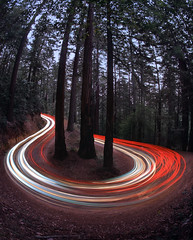 Tracers (RZ68) Tags: forest woods trees redwood fir curves hairpin turn logging road tight wide angle fisheye light trails cars traffic blue hour dirt mountain rz67 velvia provia e100