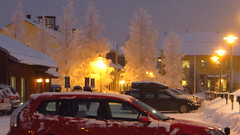 IMG_4363 (Mr Thinktank) Tags: raureif frost