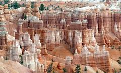 Hoodoos Of Bryce Canyon (Bernard Spragg) Tags: usa brycecanyon utah travel nature landforms scenery landscapes lumix hoodoos lumixfz1000 fz1000