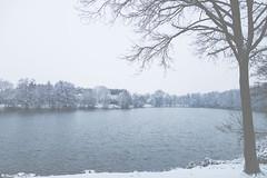 Lac d'hiver (Quentin Douchet) Tags: eau lac lake landscape neige paysage snow water
