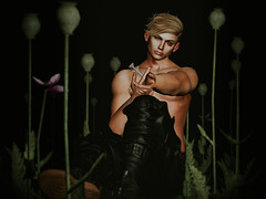 untitled (Wilmer Nirvana) Tags: secondlife male second life opium heroin drugs lightroom avatar injection chicken sandwich