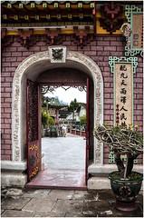 510-PUERTA AL JARDIN DE  BONSAIS EN LA SALA DE ASAMBLEAS - HOI AN - VIETNAM - (--MARCO POLO--) Tags: exotismo templos ciudades curiosidades puertas