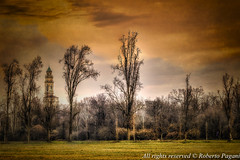 Countryscape with bell tower (A look through lens) Tags: colorefexpro exposurex3 on1effects architecture archive belltower church countryscape environment europe italy landscape lightroom location lombardia monza park plugin textured italia it