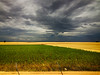 Fields in Spain (` Toshio ') Tags: toshio spain europe european spanish countryside fields clouds train landscape europeanunion nature agriculture iphone tree motion speed pattern