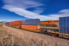 Meeting on the C&S and CB&Q (Colorado & Southern) Tags: bnsfrailway bnsf bnsfes44c4 gees44c4 manifest manifesttrain trains train railfanning railroad railfan railway railroads railroading rail rr railroadtrack colorado coloradorailroads coloradotrains