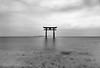 Shirahige shrine gate (Andrew Allan Jpn) Tags: shrine japan biwako shiga travel pentaxart pentaxk3 sigma 1020 blackandwhite monochrome religion zen nd1000