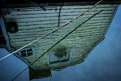 Houseboat reflections (rick miller foto) Tags: mirrorless 17mm em10markii olympus waterhome houseboat mirror reflections shoreline waterfront canada britishcolumbia bc victoria fishermanswharf