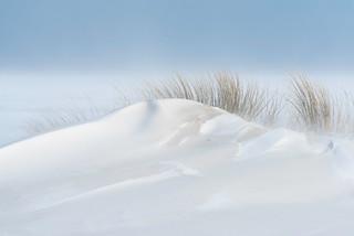 Sandy Snowdunes