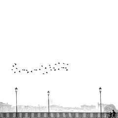the way (rwasinger) Tags: way verona italy italien bw blackandwhite birds bird person bridge city fineart schwarzweiss laterne vögel silhouette silhouetten renatewasinger 2augenblick