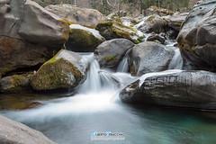 Torrentello (Albi Nikon) Tags: lunga esposizione h2o torrente montagna ghiaccio muschio champorcher aosta pomeriggio goccioline