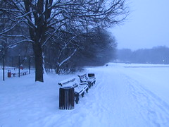 winter in the park (VERUSHKA4) Tags: path bench winter january neve day canon russia europe moscow city ville park kuskovo hiver cityscape metallic object nature bough branch perspective season way track