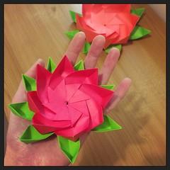 """No mud, no lotus"" (Squatbetty) Tags: origami lotusflower modular"