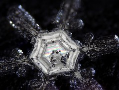 7feb18Q (peterobrien186) Tags: rainbow color interference snow snowflake snowcrystal crystal reflection winter macro nature