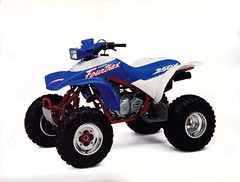 1991 Honda Fourtrax 250X