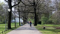 Berlín_0310 (Joanbrebo) Tags: berlin alemania de gente gent people cami camino path park parque parc tiergarten canoneos80d eosd autofocus efs1855mmf3556isstm