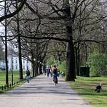 Berlín_0310 thumbnail