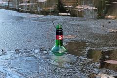 Bio - eisgekühlt im Halensee (Sockenhummel) Tags: eis halensee flasche weinflasche bio gefroren see lake berlin müll abfall bottle verschmutzung fuji x30 schwimmen