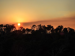 DSCN0329 (j.s. clark) Tags: florida dogisland sunset sky smoke