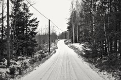 Roads (Stefano Rugolo) Tags: stefanorugolo pentax pentaxk5 k5 kepcorautowideanglemc28mm128 monochrome landscape countryroad countryside tree forest snow autumn winter hälsingland sweden sverige