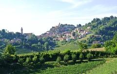Collines du Piémont (Яeиée) Tags: barolo piémont italie pressoir vin europethebestphotos patrimoines serralungadalba canelli asti cathédralesantamariaassunta médiéval cathédralesouterraine vigne viticulteur lamorra