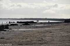 Darkened beach (Katy Wrathall) Tags: 2018 eastriding eastyokrshire england fraisthorpe january beach coast seaside winter