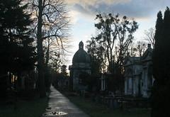 Old Jewish Cemetery (Wolfgang Bazer) Tags: zentralfriedhof vienna central cemetery alter jüdischer friedhof old jewish wien simmering österreich austria