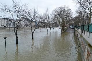 Quai de la Tournelle - Paris (France)