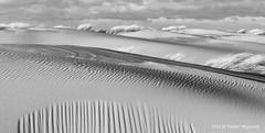 Solitude (Pieter Musterd) Tags: pietermusterd musterd canon pmusterdziggonl nederland holland nl canon5dmarkii canon5d denhaag 'sgravenhage kijkduin zee storm noordzee herfststorm branding golven waves duinen nieuweduinen zand zwartwit blackwhite zww bw