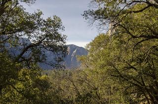 Valley Loop Trail View