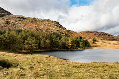 Blea Tarn (Langdale) | Rakerigg (Keith in Exeter) Tags: bleatarn pool lake water rakerigg mountain fell rock lakedistrict nationalpark nationaltrust forest tree field grass rush landscape langdale hangingvalley glacial cumbria england upland sky quotation wordsworth