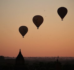birds and balloons (PawL23) Tags: balloonsoverbagan burma myanmar bagan asia sunrise silhouette landscape stupa hotairballoons