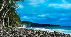 Hawaii-HonokaneNuiValley-34.jpg (Chris Finch Photography) Tags: jungle hawaiiphotography falls rainforest islands hawaii chrisfinchphotography honokanenui pololuvalley hawaiianislands hawaiianisands honokane landcapes landscape landscapephotographer ocean landscapephotography tropics pacific shore pacificocean pacificislands landscapephotographs shoreline river wwwchrisfinchphotographycom beach photographer kohala waterfalls chrisfinch photography island photographs honokanenuivalley bigisland tropical valley