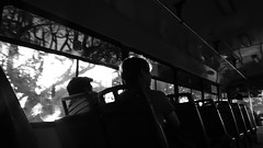 El ritmo del autobus (Isaac Palacio) Tags: new bnw street photography blancoynegro noiretblanc pretoebranco zwartwit biancoenero blackandwhite streetphoto miligramo yucatan outside park happynewyear 2018 people flickr mexico me nocturne latinamerica newyear bw year 2017 gold merida night city