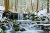State Game Lands #42 (clare j kaczmarek) Tags: stategamelands42 waterfalls winter moss snow mountainstreams forests hemlocks ice rocks laurelhighlands westmorelandcounty