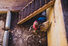 Wool at the tannery (Daniele Zanni) Tags: 500px facebook fes flickr google medina morocco streetphotography tannery travel