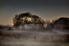 Foggy Evening (Klaus Ficker --Landscape and Nature Photographer--) Tags: fog evening sunset kentuckyphotography klausficker usa kentucky canon eos5dmarkii germany