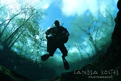 IMG_9566 (2) (SantaFeSandy) Tags: ginnie ginniesprings green guy cavern cave canon camera catfish colors caves color tannins diving devilseye devilsear sandrakosterphotography sandrakosterphotographycom sandykoster sandy sandra scuba santafesandysandrakosterphotographycom scubadiving bryant silhouette passion love it mystery mysterious intrigue