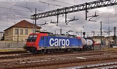 E484 001 (MattiaDeambrogio) Tags: e484 sbb cargo merci tec container novara boschetto cim