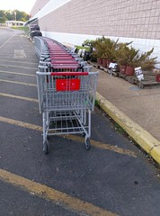 Shopping carts, and kinda brown looking plants (l_dawg2000) Tags: 2016 90s bigk bluelightspecial closing corinth departmentstore discountstore flood goingoutofbusiness kmart liquidation mississippi ms old remodel remodeled sale store vintage unitedstates usa