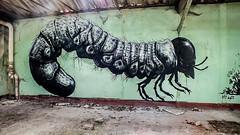 ROA's Factory (ashley96DNL) Tags: abandoned factory skeletton roa urbex decay art graffiti lost