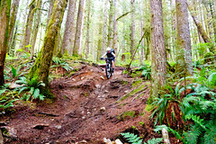 Team-Konstructive-Dream-Bikes-com-BC-BikeRace-Downhill