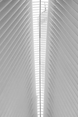 JBM_9760 (Xavier Bornot) Tags: nyc newyork wtc worldtradecenter architecture downtown light natural