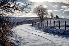 Round the bend (1) (Missy Jussy) Tags: landscape lane lancashire land countryside rural newhey rochdale england uk unitedkingdom farmland farming path trees hedgerow grass fence sky sunlight snow winter seasonal outside outdoor canon canon5dmarkll canon70200mm ef70200mm ef70200mmf4lusm 70200mm