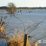 Flooded river bank in The Netherlands thumbnail