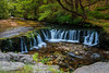 Horse shoe falls - Sgwd y Bedol (The Frustrated Photog (Anthony) ADPphotography) Tags: breconbeacons category places riverneath sgwdybedol theelidirtrail travel wales waterfall forest woodland water wood rock landscape creek river tree grass canon canon70d canon1585mm falls uk unitedkingdom greatbritain longexposure silkywater branches trunks gorge pathway riverbed watercourse moss lichen twigs blur motionblur waterblur nature naturalplace greenery rural countryside