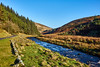 Dunsop Valley (scottprice16) Tags: england lancashire landscape valley dunsopvalley river riverdunsop wall stone grass fells trees forestry road winter january 2018 water flow outdoors forestofbowland aonb areaofoutstandingnaturalbeauty leisure walking sonyrx10
